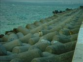 Barriers to help break the waves infront of the Sea Wall.: by abcarlson, Views[522]