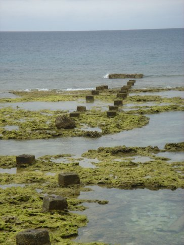 Exposed coral reef and what I'm guessing used to be a pier?  Thought it made a cool photo.