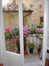 Beautiful flowers on the jewelry store's balcony: by abcarlson, Views[789]