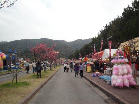 Festival street from the opposite end