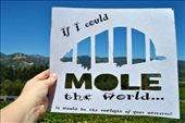 If I could Mole the World  http://www.moletheworld.com/: by acrossourworld, Views[127]