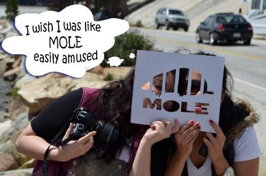 i wish i was like mole, easily amused