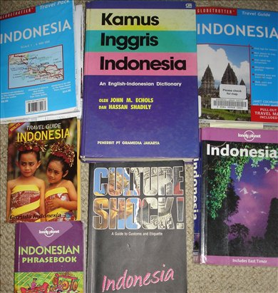 indo reading