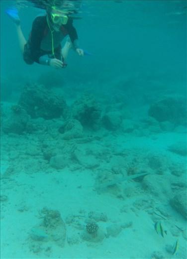 Dave snorkelling with a Long Tom fish.  Iboih, Sabang.  (Pulau Weh).