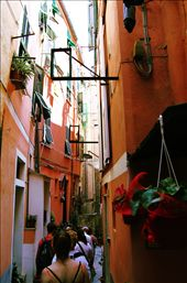 A view from the narrow, twisting alleyway in Corniglia, just one of the many sites travelers will experience on their hike through the Five Towns.: by aelson, Views[612]