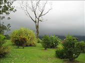 La Fortuna side of Arenal: by agradecidotraveler, Views[114]