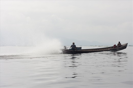 As number of tourists is growing constantly, speed boats are increasing too and with them a threat to this small and sensitive biodiversity. Environmental effects of the rapid population growth and unsustainable cultivation process are causing weeds and algae surge and therefore distinction of its previous flora and fauna.