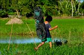 A motherless kid in our barangay who takes home the net that her father used in drying under the sun the rice they harvested.: by akoayinhinyero, Views[744]