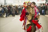 New Year Tradition in Romania: by alecsandraralucadragoi, Views[140]