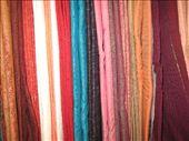 Saris!!!!: by alexbg, Views[238]
