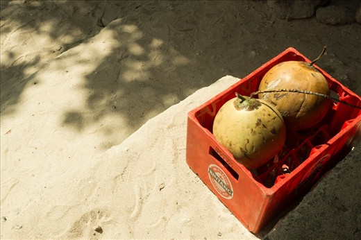 coconut is healthy, but alcohol? yeah, two combined object but different