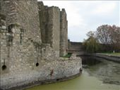 Smederevo castle: by all_powered_up, Views[1114]