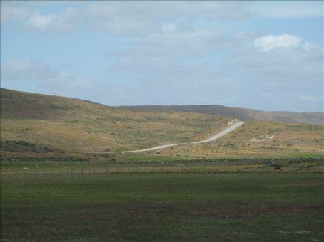 Tierra del Fuego.  Sheep and gravel roads.
