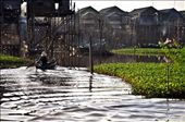 Poverty floating amidst the beauty. A village in Cambodia rely on the river for sustenance.: by allenpangan, Views[177]