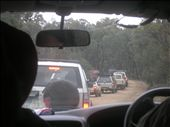 On our convoy to start a few hours of fossicking... : by allwelcome, Views[347]