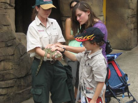 Animal studies - yes! Its a baby croc!