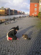 Trondheim. Making friends.: by allwelcome, Views[509]