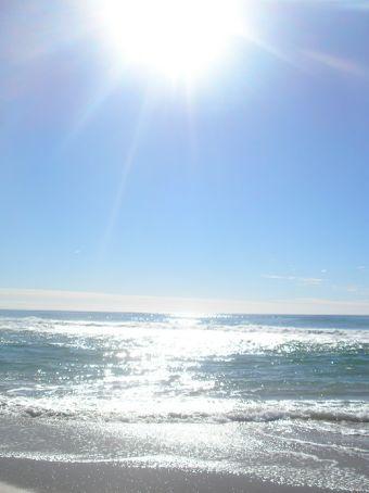 noosa beaches!