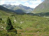 by alpinea, Views[592]