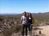 Checking out the saguaros and vistas outside along Gate's Pass Rd, Tucson, AZ.: by alpiner84, Views[409]