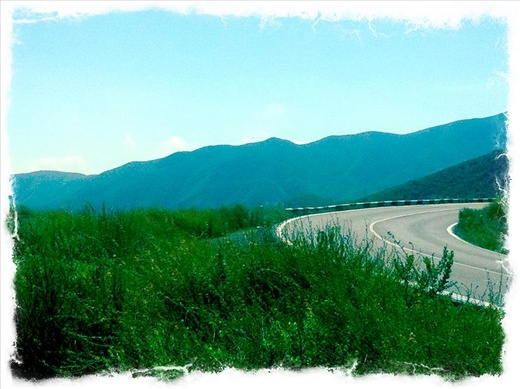 The drive through the lush green mountains to Ensenada. Ahhh, so lovely.