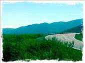 The drive through the lush green mountains to Ensenada. Ahhh, so lovely. : by alpiner84, Views[519]