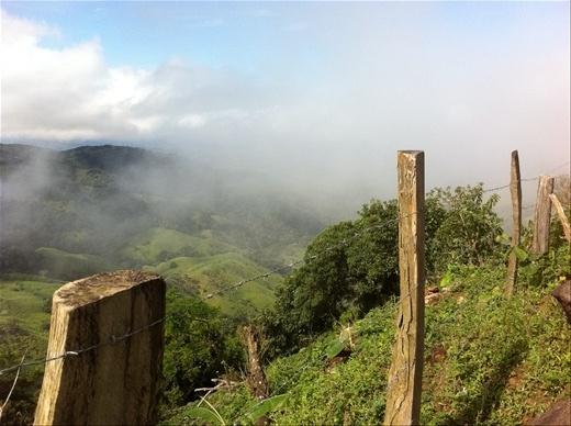 More Monteverde vista