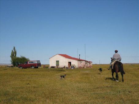 Abel riding out to gather sheep on his estancia.