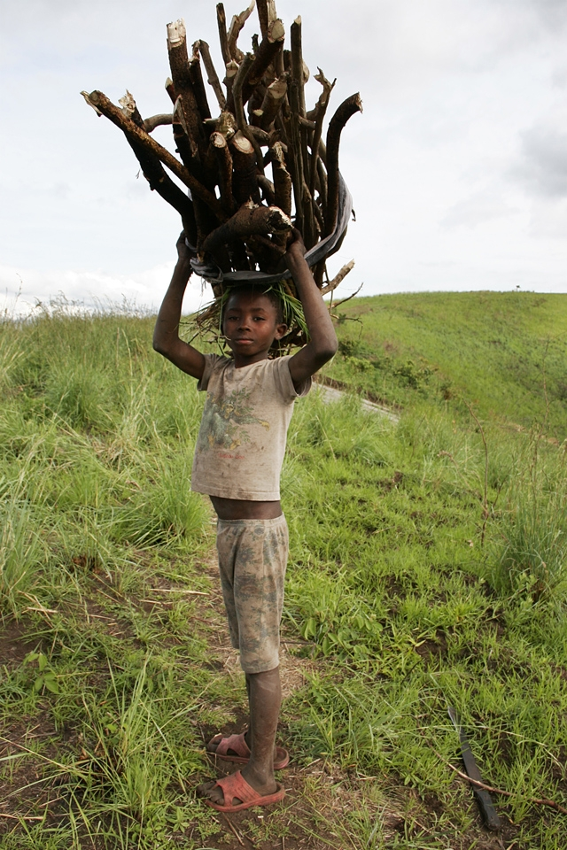 african boy with firewood on his head return home after collecting firewood