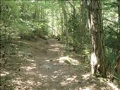 It was such a gorgeous hike. So quiet and tranquil. Not easy though!: by alysandjess, Views[257]