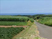 Countryside meets the ocean: by alyssa_schwartz, Views[309]