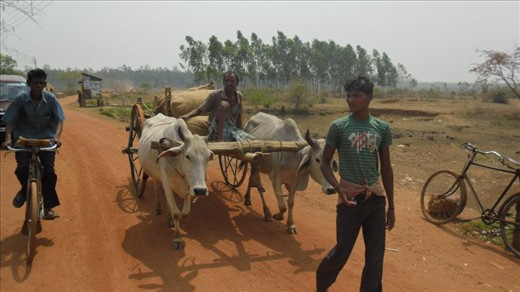Most popular form of transportation in the villages
