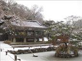 Korean Folk Village, Suwon: by amy_palfreyman, Views[471]