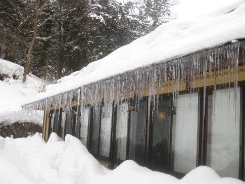 I ♥ icicles