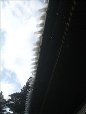 Melting snow turns to ice and falls from the temple roof... safe. Nikko: by amy_palfreyman, Views[243]