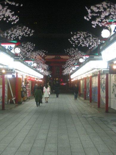 Nakamise Dori shutter art is lit up from sunset until 11pm