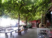 Hostel in Onetaka: by amyaaron, Views[555]