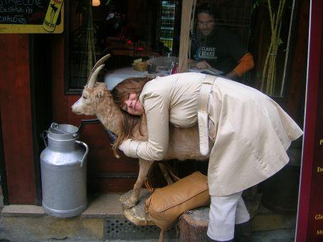 i love ze goat