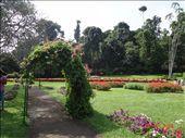Jardim Botânico em Kandy: by andreamxavier, Views[216]