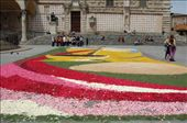 Cool...not sure what it is for but looks good...made from flower petals.: by andrew_and_ange, Views[132]