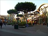 Downtown Disney: by andrewp-melissar, Views[202]