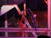 Minnie - Fantasmic! Light Show: by andrewp-melissar, Views[457]