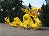 Paper dragon: by andynjen, Views[1023]