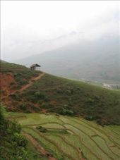 The beautiful rice terraces: by andynjen, Views[112]