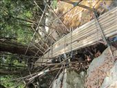 The bridge to the waterfall.  Very Indiana Jones.  We were pretty apprehensive when we got to it.  Then I said, f*ck it, and went for it.: by anealis314, Views[148]