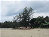 from the beach, looking towards my bungalow: by anealis314, Views[103]