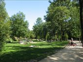 People enjoying the sunny weather in a park: by ang_and_abe, Views[688]