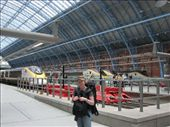 The St Pancras International terminal: by ang_and_abe, Views[252]