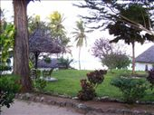 the view from the front door of our $8 a night banda: by angeline, Views[382]