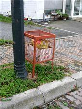 Ici les poubelles sont toujours en cage ou en filet...trop de ptites betes...: by angeours, Views[274]